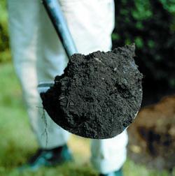 soil_2